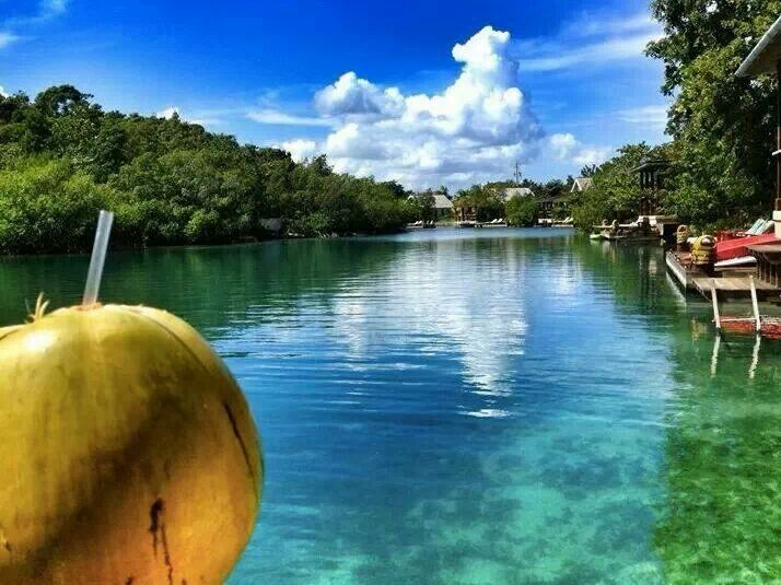 view of river, beautiful clouds and coconut